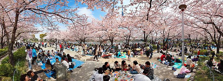 Tokyo. Apr.10, 2011